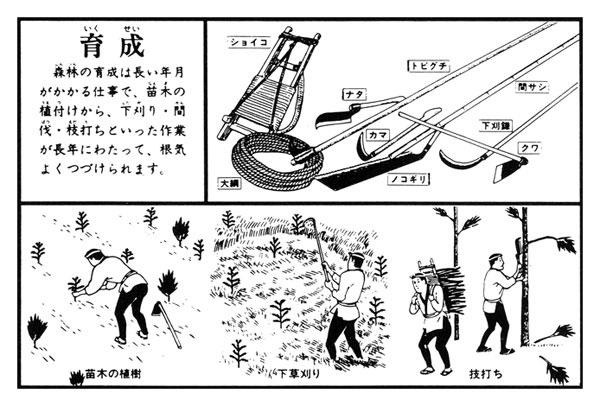 育成 森林の育成に使用する道具とその作業