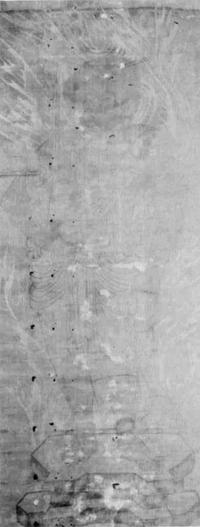 絹本墨画淡彩 不動明王(107×42)
