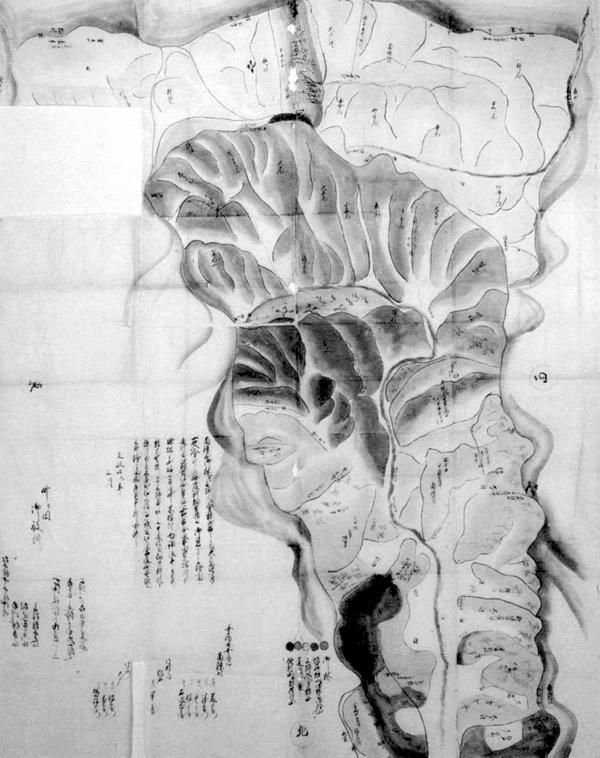 南条村三郷(南条・大戸・作名)山林新畑絵図 文政4年(1821)