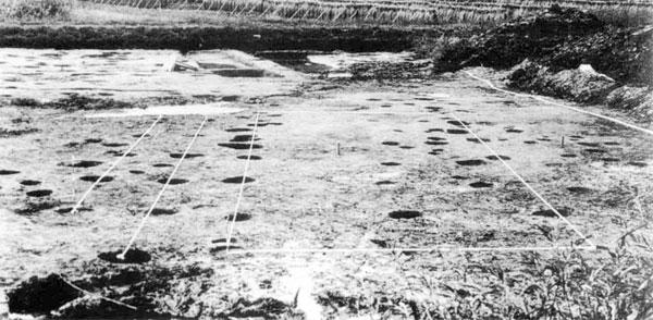 ほりだされた塀と建物の跡(鋸南町下ノ坊遺跡)