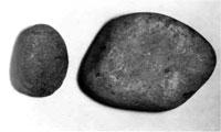 磨石と石皿(館山市千田遺跡) 縄文時代