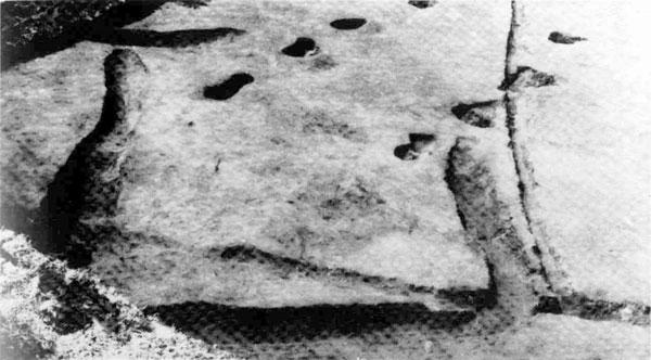 ほりだされた方形周溝墓(千倉町健田遺跡)
