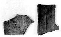 平瓦(館山市安房国分寺跡) 奈良時代