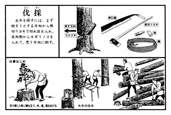 伐採 立木を倒すための道具と作法