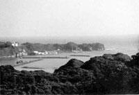 勝浦城跡(勝浦市)
