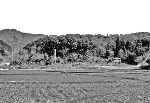 この丘陵上から御倉山が真正面に見える