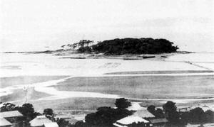 41.宮城の赤山(頼忠寺山)から見た高の島 (大正末~昭和初期)