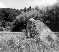 朝比奈三郎伝説がある滝川の立石