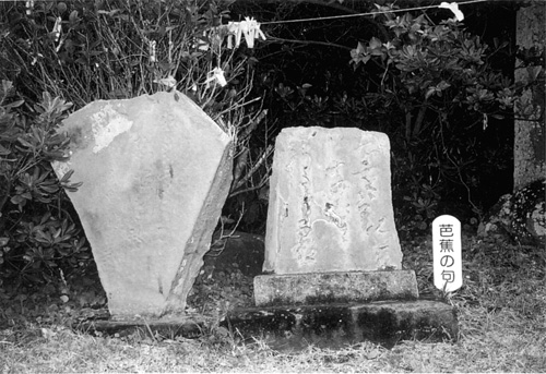 白浜町白浜野島崎.厳島神社の芭蕉句碑