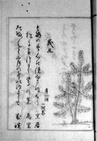 38.『旦暮帖』 文化12年(1815)   加藤定彦氏蔵