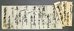 50.薬代請取書   菊井義朝氏蔵