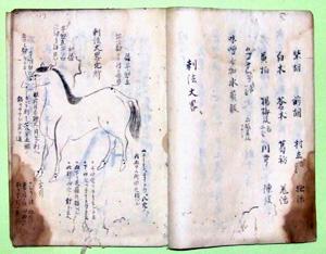 68.急用馬之薬方(『海国兵談』抜書)   菊井義朝氏蔵