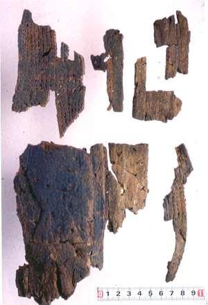 資料21.館山市大寺山洞窟遺跡出土遺物 木製漆塗楯