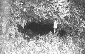 出野尾洞窟遺跡