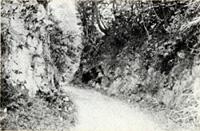 木の根街道(船形地区)